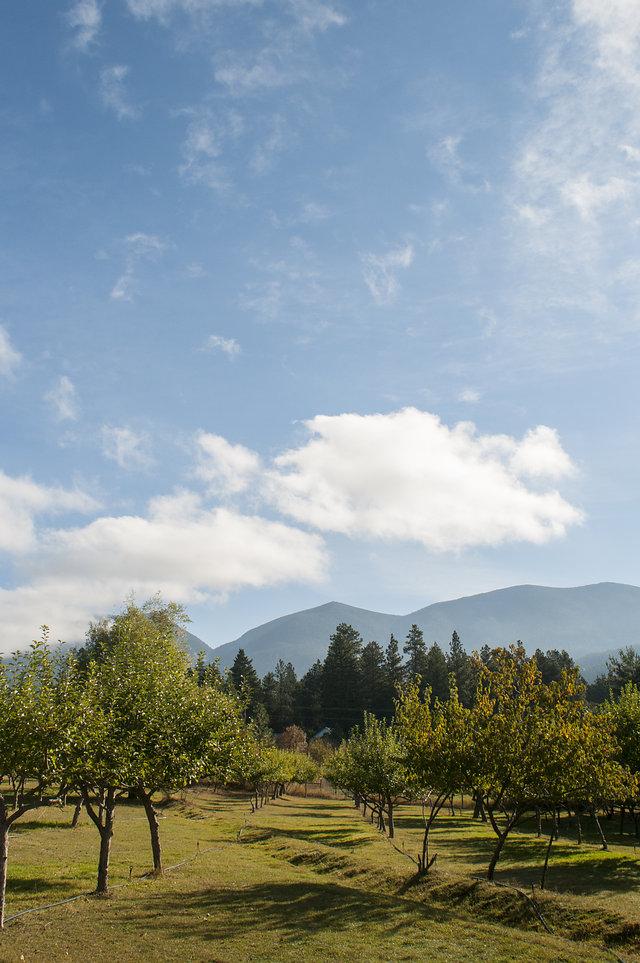 montana editorial commercial photographer jessica lowry farm